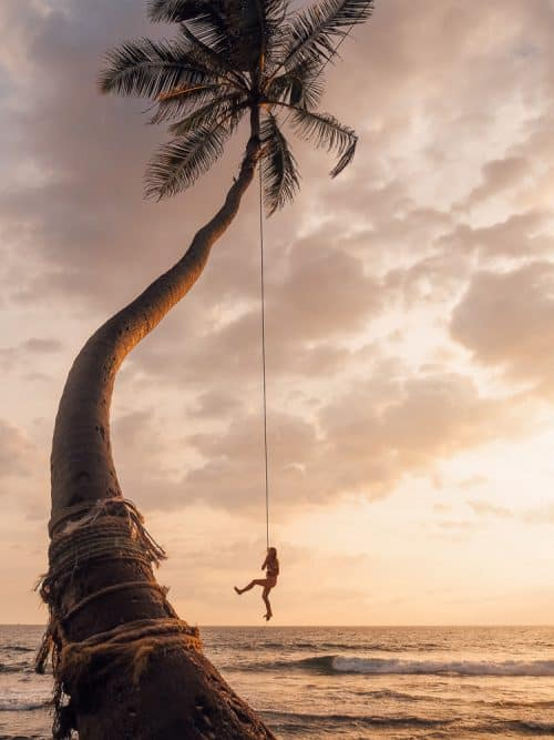 instafamous rope swing, palm tree rope swing sri lanka, places to visit in sri lanka, palm tree rope swing, dalawella beach, unawatuna, unawatuna beach, dream cabana, dalawella rope swing, sri lanka trip, visit sri lanka, sri lanka tourists places, sri lanka itinerary, sri lanka trip, visit sri lanka, sri lanka tourists places, sri lanka itinerary, places to visit in sri lanka, sri lanka holidays, best places to visit in sri lanka, tourist attractions in sri lanka, palm tree rope swing - dalawella beach - sri lanka, 2 weeks in sri lanka itinerary, sri lanka itinerary, 2 weeks in sri lanka, sri lanka itinerary 3 weeks, two weeks in sri lanka, sri lanka two week itinerary, sri lanka travel itinerary, sri lanka travel guide, best itinerary for sri lanka