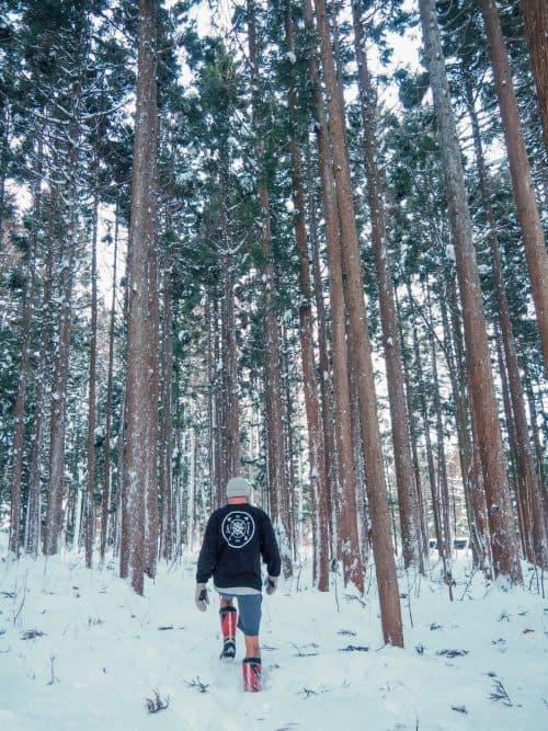 hakuba ski resorts, hakuba accommodation, hakuba ski, hakuba japan skiing, hakuba ski pass, hakuba ski season, hakuba ski fields