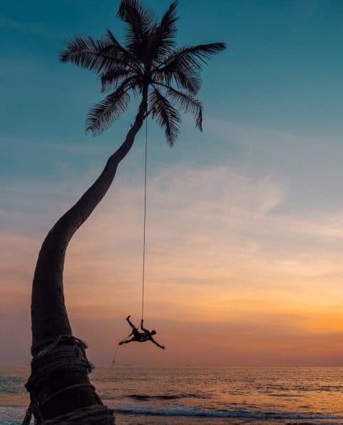 instafamous rope swing, palm tree rope swing sri lanka, palm tree rope swing, dalawella beach, unawatuna, unawatuna beach, dream cabana, dalawella rope swing