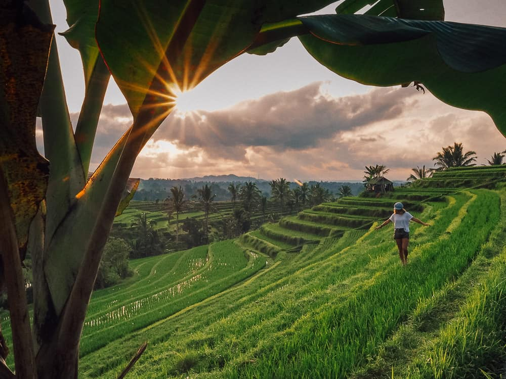 JATILUWIH RICE TERRACES – UNESCO CULTURAL SITE IN BALI