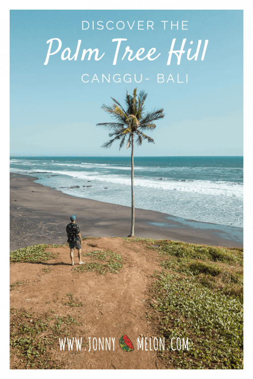 pigstone beach bali