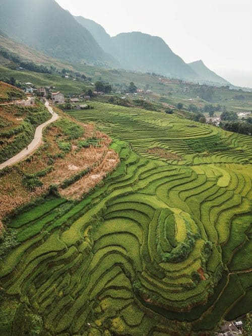 sapa rice fields 13 e1535869311876