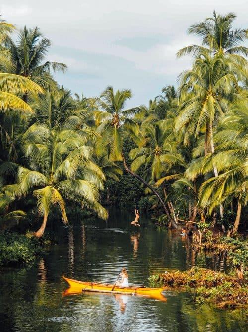 bent palm tree siargao, palm tree rope swing siargao, palm tree siargao, bent palm tree in siargao, siargao bent palm