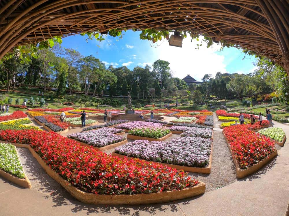 chiang rai tour, things to do in chiang rai, mae kajan hot spring, doi tung botanic gardens, doi tung