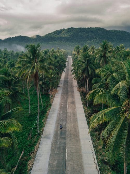 palm tree road siargao