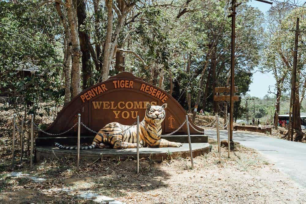 periyar national park, periyar tiger reserve, periyar national park safari, periyar wildlife, periyar national park online booking, periyar national park booking, periyar national park timings, periyar tiger reserve booking, periyar lake, periyar wildlife sanctuary, periyar park, periyar national park hotels, periyar forest, periyar reserve, periyar tiger reserve jeep safari, periyar, periyar lake boating, periyar national park entry fee, periyar tiger reserve location, periyar sanctuary, periyar kerala, periyar national park kerala, periyar photos, periyar wildlife sanctuary kerala, periyar wildlife sanctuary thekkady, periyar tiger reserve thekkady, where is periyar national park, how to reach periyar national park, periyar lake kerala, periyar national park best time to visit, thekkady periyar national park, periyar boating charges, periyar boating
