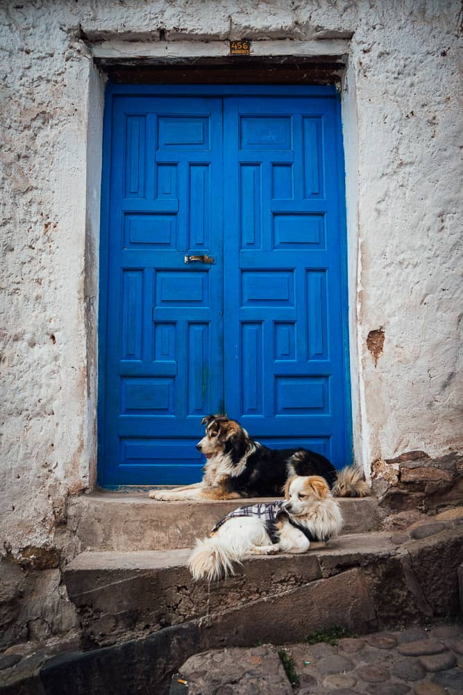 things to do in cusco, what to do in cusco, things to do in cusco peru, what to do in cusco peru, tours cusco, cusco hotels, hostel cusco, cusco what to do, cusco turismo, what to see in cusco, cusco city tour, hotel cusco peru, lima to cusco flights, city tour cusco, hotels in cusco peru, things to see in cusco, cusco attractions, top things to do in cusco, cusco tourist attractions, places to visit in cusco, cusco peru attractions, things to do in cusco on your own, cusco peru things to do, cusco places to visit, things to do in cusco at night, best hotels in cusco, cusco to lima flight, hostal cusco peru, hostel cusco peru, things to do near cusco, cusco peru turismo, where to stay in cusco, to do in cusco, cusco what to see, fun things to do in cusco, day trips from cusco, cusco day tours, cusco guide, cusco airport, best things to do in cusco peru, best hostels in cusco, cusco day trips, walking tour cusco, machu picchu tours from cusco, cuzco perù, best hotels in cusco peru, cusco map, cusco travel guide, best places to stay in cusco, travel to cusco peru, cusco peru nightlife, things to do in peru cusco, best things to do cusco, things to do cusco peru, altitude in cusco, best places to eat in cusco, attractions in cusco, best hostel in cusco, accommodations in cusco, best place to stay in cusco, climate in cusco, plaza de armas cusco, san blas cusco