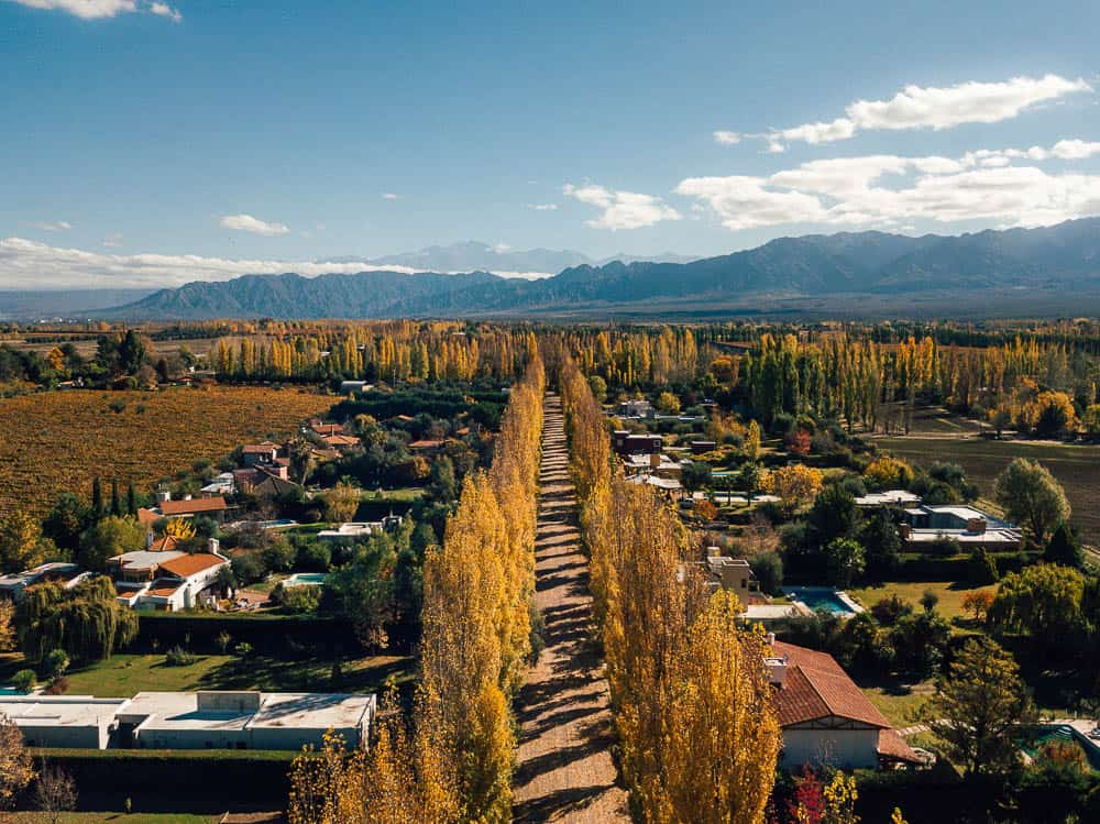 THE BEST MENDOZA WINE TOUR – A COMPLETE GUIDE