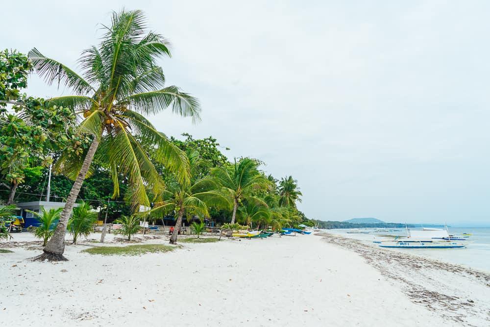 white beach panglao, white beach bohol