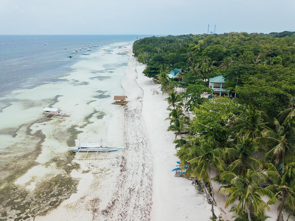white beach panglao 5