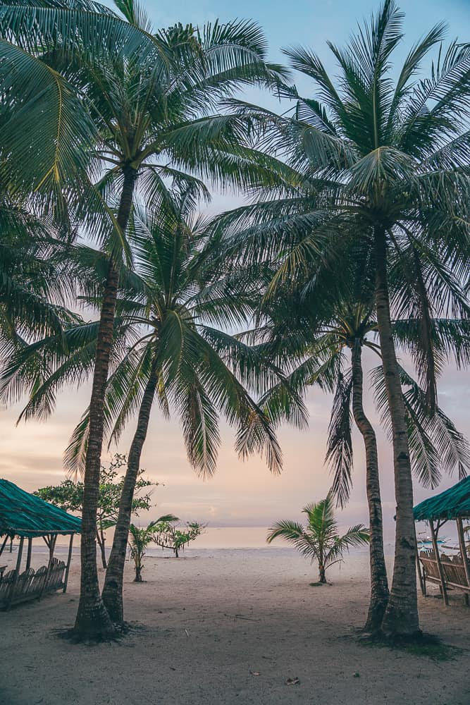 things to do in bantayan, what to do in bantayan island, things to do in bantayan island, bantayan island itinerary, bantayan island accommodation, where to stay in bantayan island, bantayan island cebu itinerary, bantayan island activities, bantayan island beaches, bantayan island things to do, bantayan island tourist spot, sugar beach bantayan, what to do in bantayan, bantayan itinerary, bantayan beach, bantayan cebu, bantayan island day tour, santa fe bantayan island, bantayan island philippines, bantayan island tour, places to visit in bantayan island, places to stay in bantayan island, cebu city to bantayan island, hagnaya to bantayan, best beach in bantayan island, cebu to bantayan island, where to go in bantayan island, how to get to bantayan island, bantayan island travel guide, how to go to bantayan island, hagnaya port to bantayan, bantayan island blog, cebu to bantayan, bantayan island attractions, best beaches in bantayan, bantayan tour, places to go in bantayan island, sugar beach bantayan