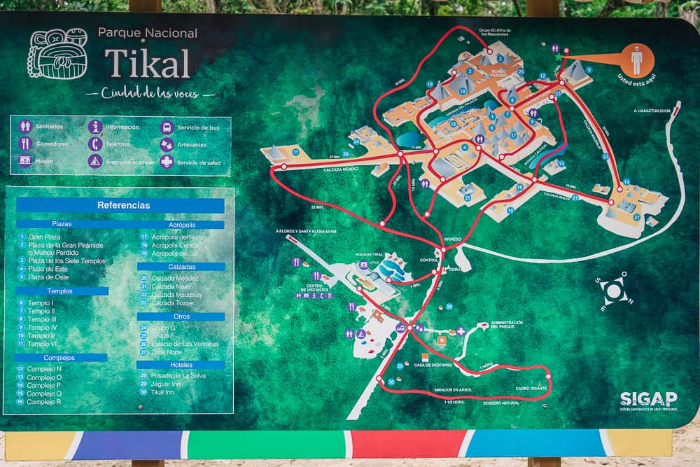 tikal, tikal national park, tikal temple, tikal tours, flores to tikal, flores tikal, visiting tikal, tikal guatemala, mayan city of tikal, guatemala city to tikal, tikal map, where is tikal, tikal entrance fee, guatemala tikal, ruins tikal, ruins of tikal, tikal tour, tikal ruins guatemala, belize city to tikal, san ignacio to tikal, tikal sunrise tour, tikal tours from flores, tikal map