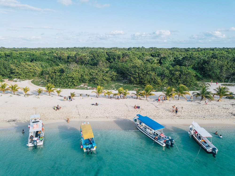 things to do in cozumel, what to do in cozumel, things to do in cozumel mexico, cozumel tours, cozumel things to do, cozumel activities, cozumel mexico things to do, cozumel attractions, cozumel beaches, best things to do in cozumel, cozumel snorkeling, best beaches in cozumel, cozumel jeep tour, best snorkeling in cozumel