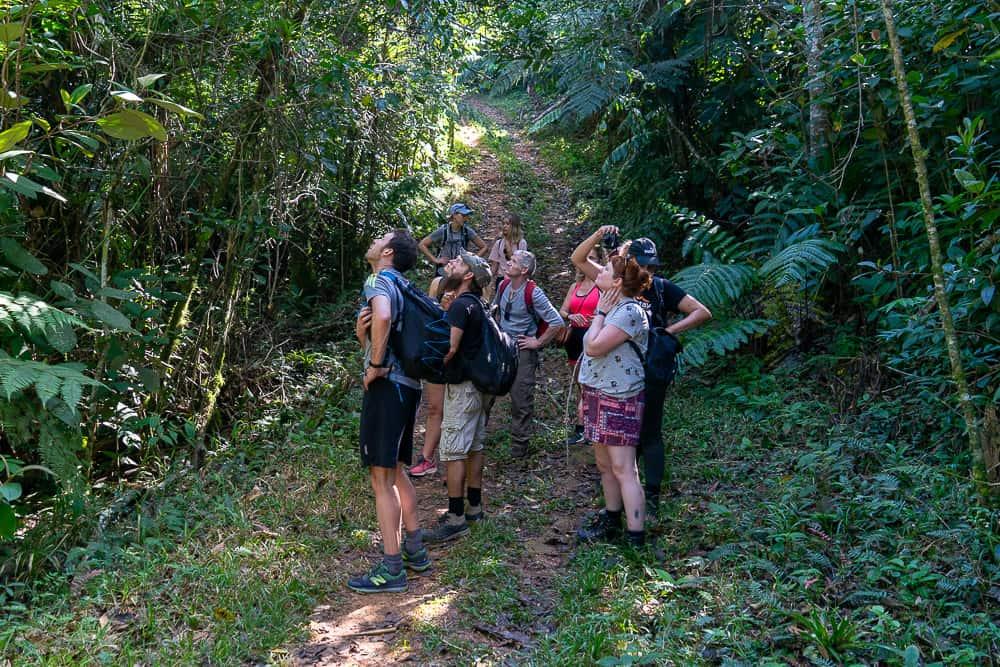 cuba itinerary, cuba itinerary 10 days, cuba travel itinerary, 10 days in cuba, cuba 10 days, cuba in 10 dayS, itinerary for cuba, cuba 10 days itinerary, 10 day cuba itinerary, 10 day itinerary cuba, 10 days cuba itinerary, itinerary cuba 10 days, 10 days in cuba itinerary, tinidad cuba, things to do in trinidad, sierra del escambray, trinidad hiking, hiking in trinidad