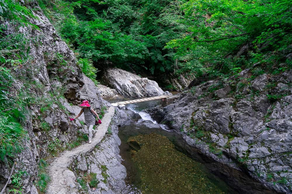 anmon gorge, shirakami-sanchi