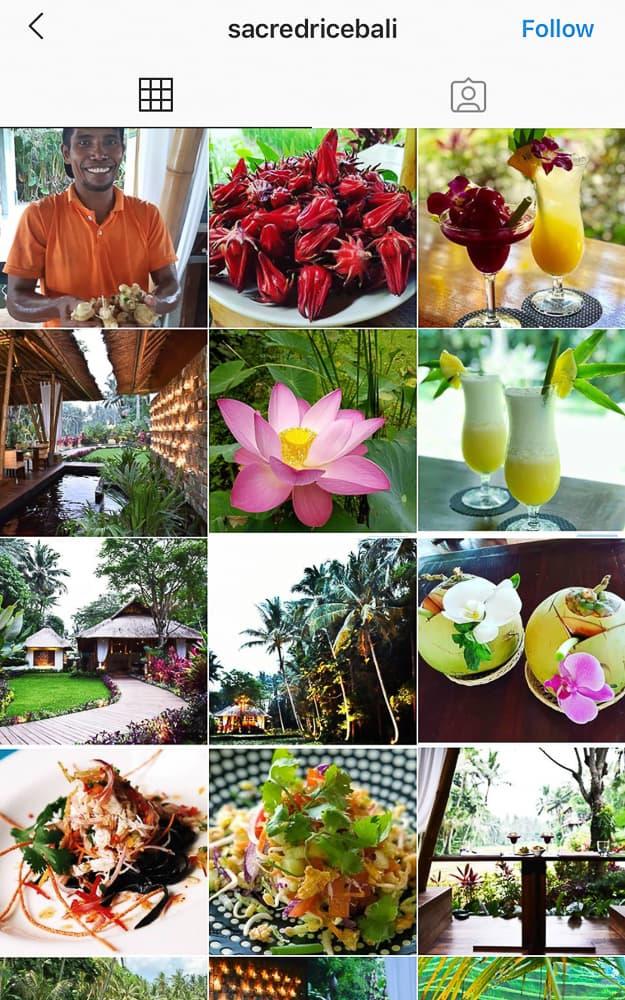 best ubud restaurants 16