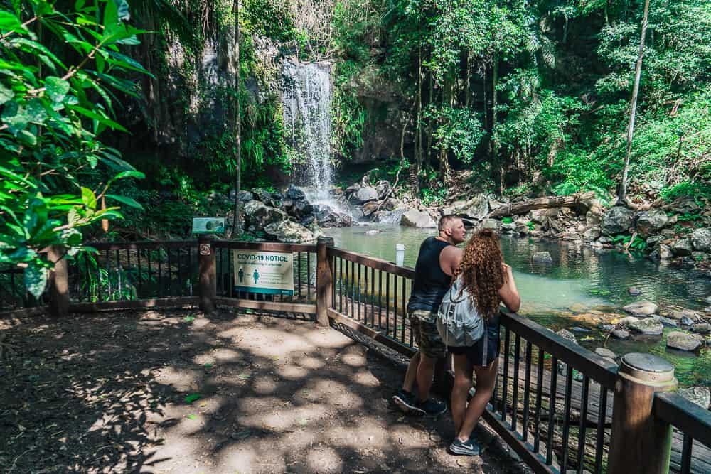 curtis falls, curtis falls track, curtis falls cafe, curtis falls tamborine, curtis falls mt tamborine, curtis falls mount tamborine, curtis falls walk, mt tamborine waterfalls, waterfalls mt tamborine, mount tamborine walks