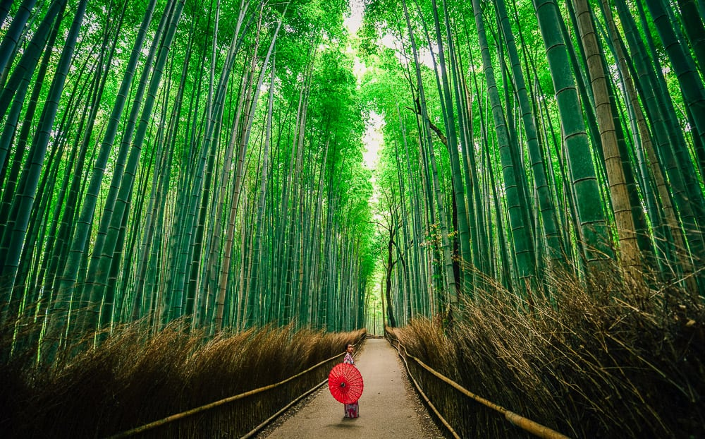 1 DAY KYOTO ITINERARY – THE ULTIMATE GUIDE