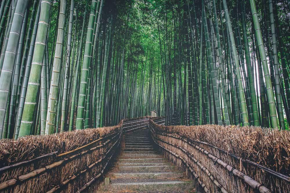 kyoto itinerary 3