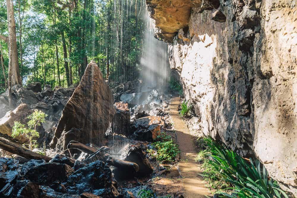 twin falls circuit, twin falls gold coast, twin falls springbrook, springbrook waterfall, springbrook national park waterfalls, waterfalls gold coast, waterfalls springbrook, springbrook national park walks