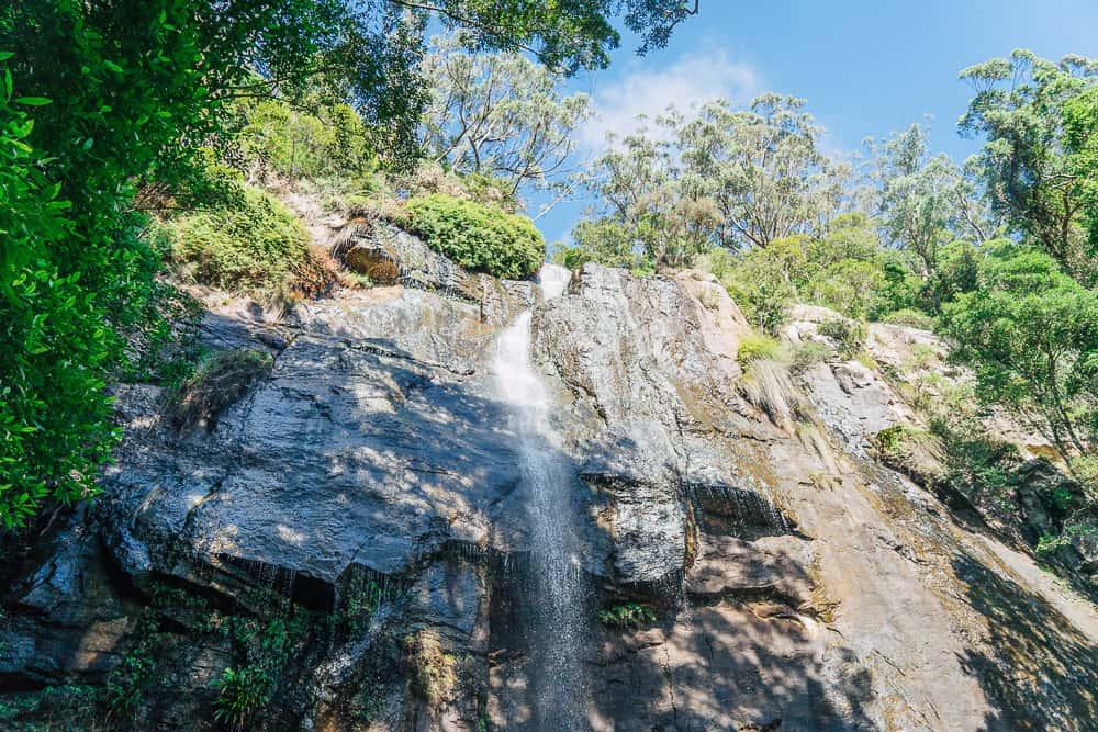 springbrook twin falls, twin falls circuit, twin falls gold coast, twin falls springbrook, springbrook waterfall, springbrook national park waterfalls, waterfalls gold coast, waterfalls springbrook, springbrook national park walks