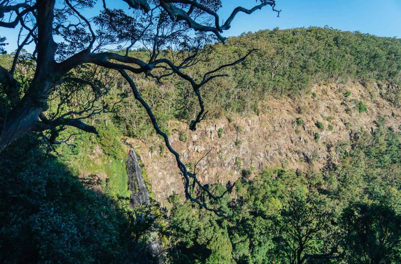 morans falls, moran falls, morans falls lamington national park, lamington national park walks