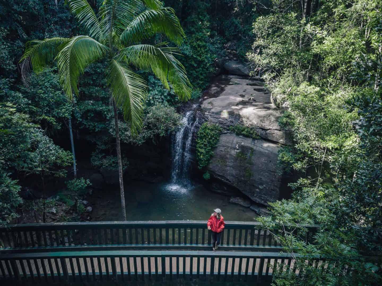buderim falls, buderim forest park, serenity falls, buderim waterfall, serenity falls buderim, budgerim falls sunshine coast