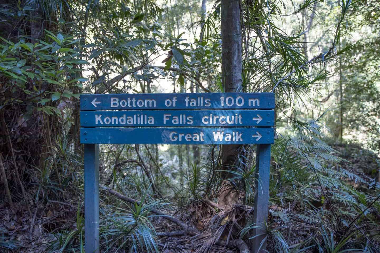 kondalilla falls, kondalilla falls circuit, kondalilla falls walk, kondalilla falls swimming hole, kondalilla national park, kondalilla falls map, kondalilla falls montville, kondalilla falls national park, kondalilla waterfall, kondalilla falls sunshine coast, where is kondalilla falls, kondalilla waterfalls