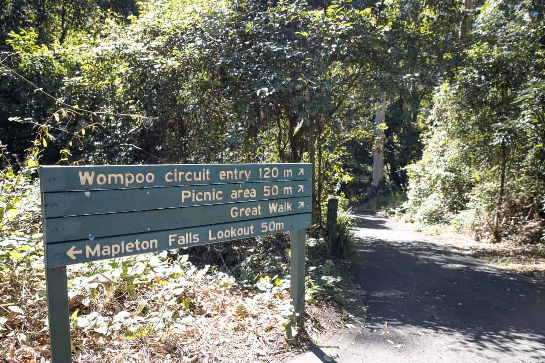 mapleton falls sunshine coast, mapleton falls, mapleton falls national park, mapleton falls lookout, mapleton falls walk, mapleton waterfalls, mapleton national park, wompoo circuit