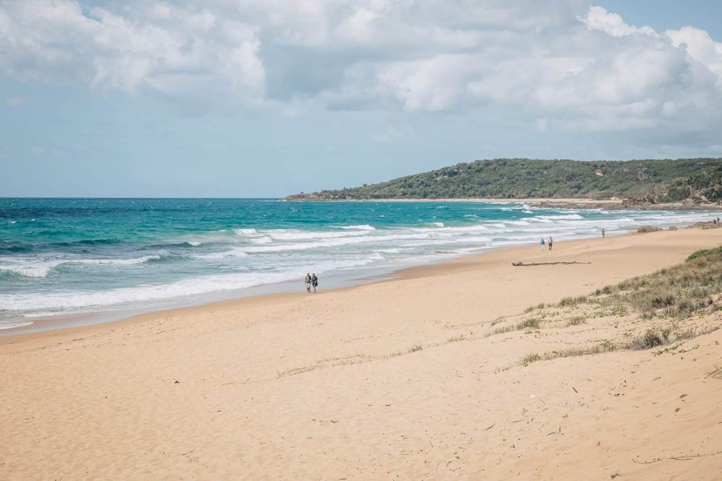 agnes water, agnes waters, things to do in agnes waters, hings to do in agnes water, surfing agnes water, seventeen seventy queensland, seventeen seventy camping, seventeen seventy australia, seventeen seventy, agnes waters things to do, agnes waters map, agnes waters caravan park, agnes waters beach, agnes waters accommodation, agnes water surfing, agnes water surf cam, agnes water queensland, agnes water qld, agnes water caravan park, agnes water camping, agnes water beach, camping ground agnes water, chinamans beach agnes water