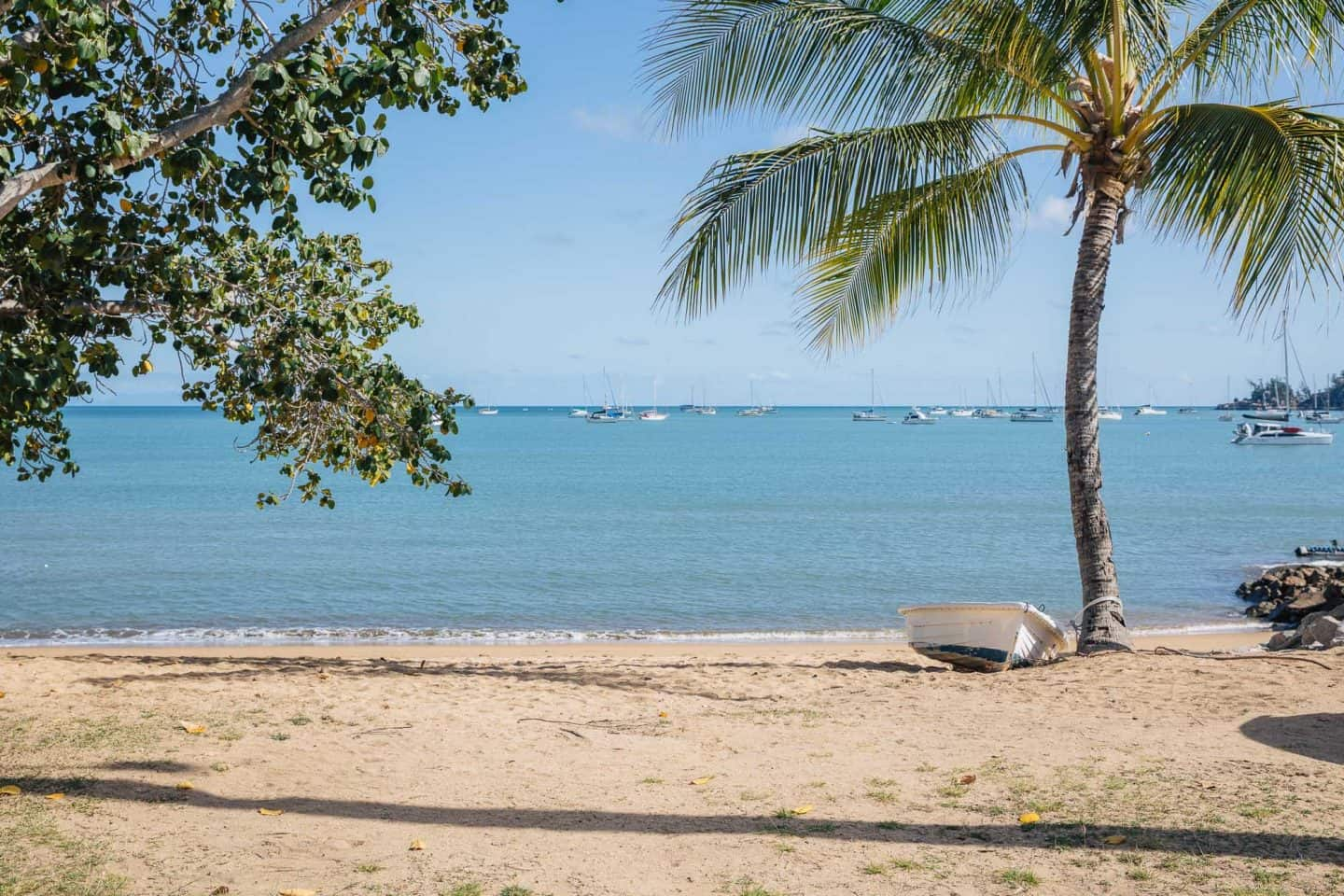 magnetic island, things to do on magnetic island, things to do in magnetic island, magnetic island australia, magnetic island queensland, horseshoe bay