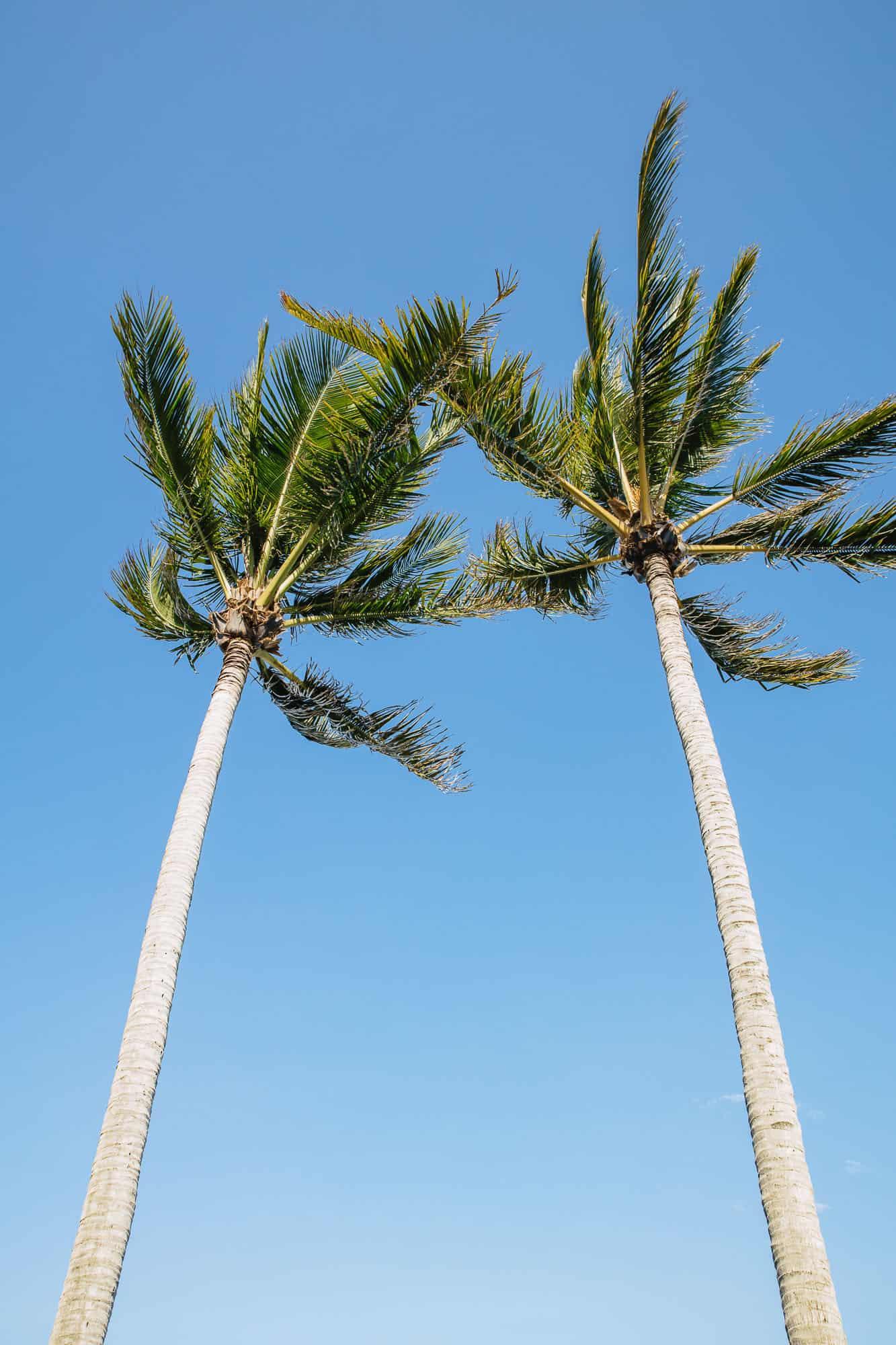 yeppoon beaches, beaches yeppoon, best beaches in yeppoon, beaches in yeppoon, zilzie beach