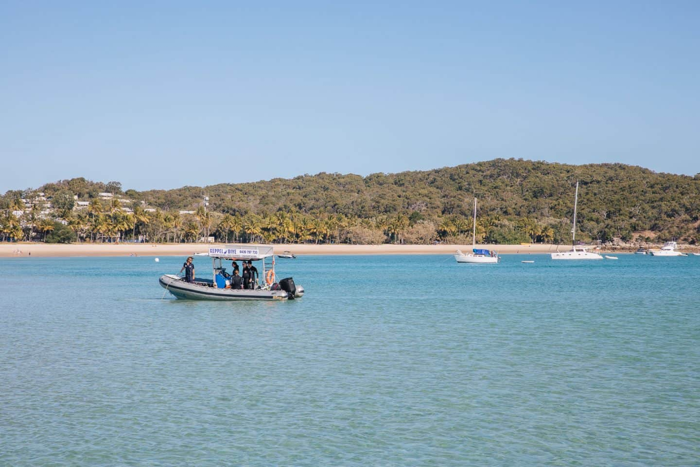 great keppel island, keppel island, things to do in great keppel island, keppel dive
