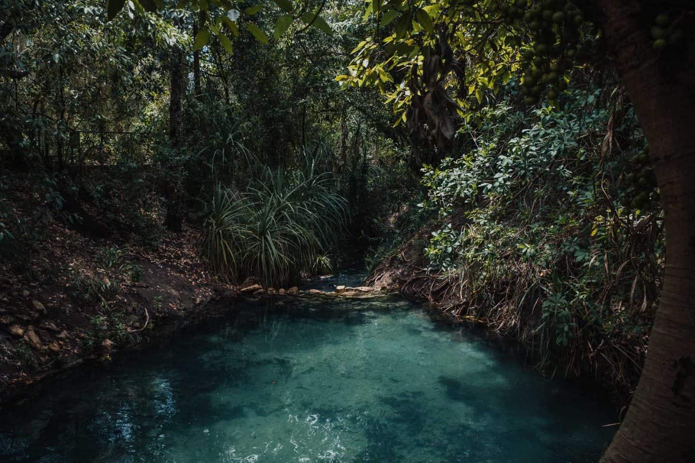 katherine hot springs, hot springs katherine