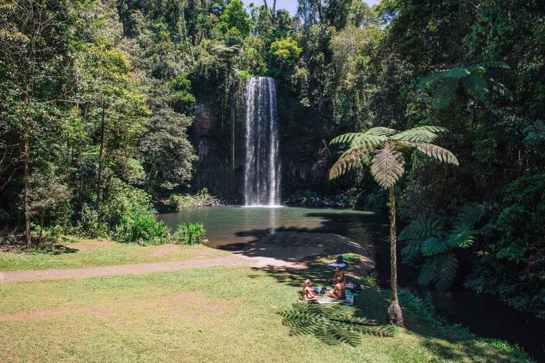 millaa millaa falls, millaa millaa waterfall, millaa millaa falls queensland, millaa millaa falls cairns, millaa millaa, waterfall circuit cairns