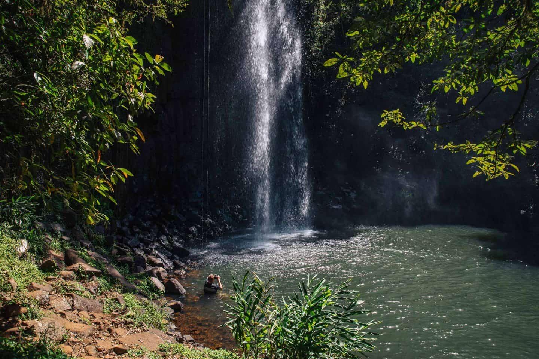 millaa millaa falls, millaa millaa waterfall, millaa millaa falls queensland, millaa millaa falls cairns, millaa millaa