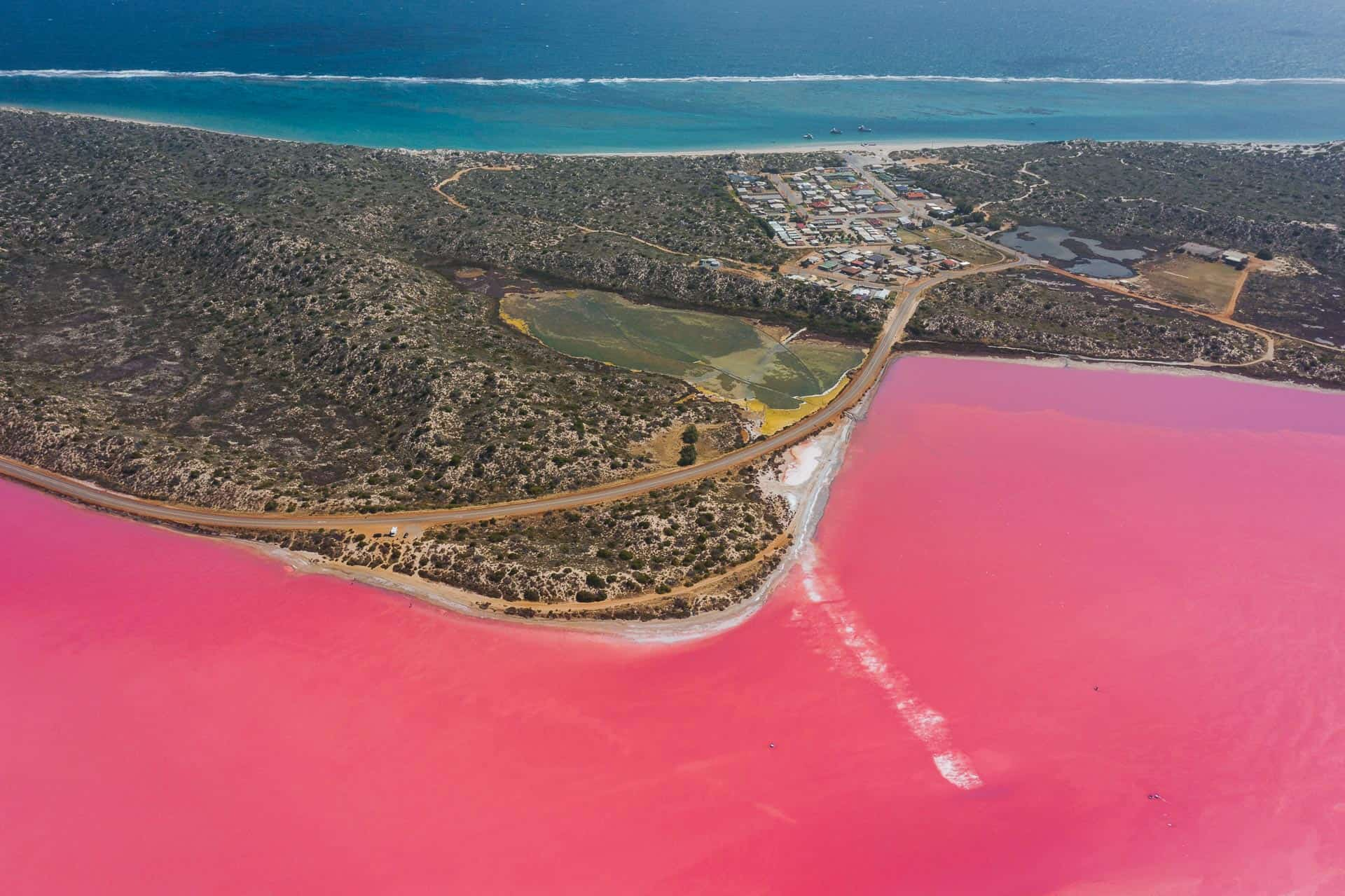 pink lake western australia, hutt lagooon, hutt lagoon pink lake, western australia pink lake, pink lake australia